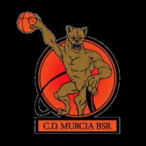 Patrocinadores oficiales del C.D. MURCIA BSR